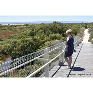 St Kilda Mangrove Trail and Interpretive Centre - Interpretive Centre