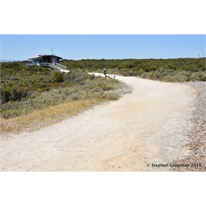 St Kilda Mangrove Trail and Interpretive Centre - Salt Marshes