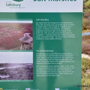 St Kilda Mangrove Trail and Interpretive Centre - Salt Marshes