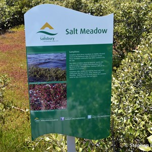 St Kilda Mangrove Trail and Interpretive Centre - Salt Meadows