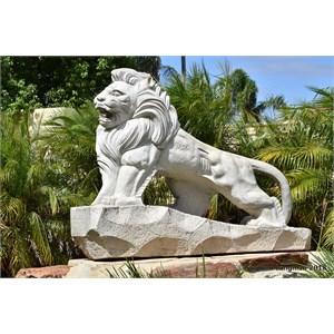 Shi Shi Friendship Lion