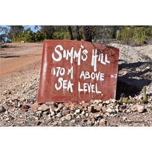 Simm's Hill