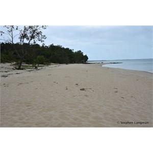 Muttee Head Turtle Nesting Beach