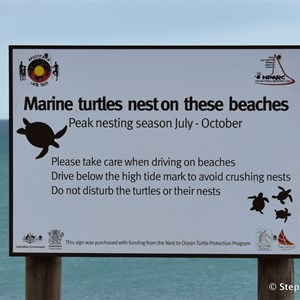 Muttee Head Turtle Nesting Beach