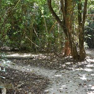 Kurrimine Beach Conservation Park