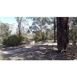 Red Gum Springs