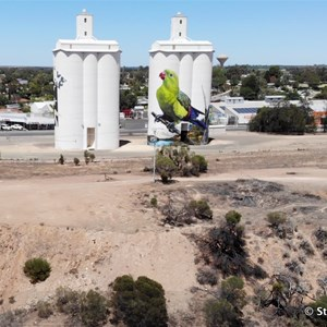 Waikerie Silo Art from the air