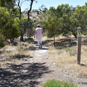 Start of Marino Conservation Park Botanical Walk