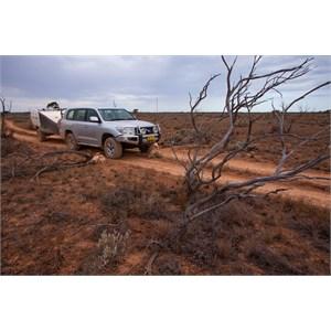 Border Crossing Old Coach Rd SA/WA