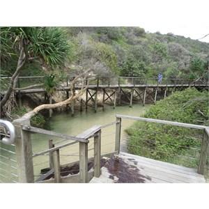 Boardwalk along the creek