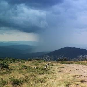 Mt pinnibar