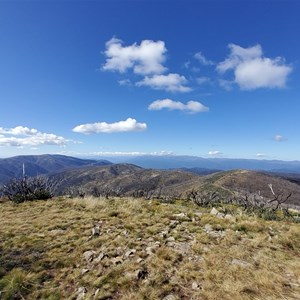 View from the top - April 2021