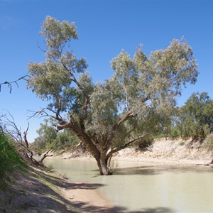 Eyre Creek, QAA Line