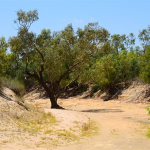 Eyre Creek (Dry)