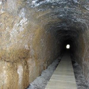 Spray tunnel