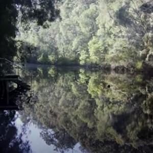 Canoe launching place - Warren River