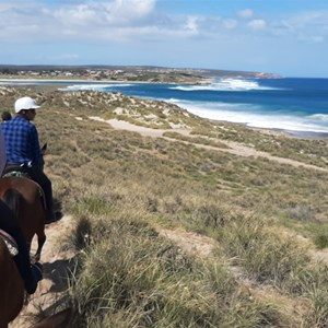 Trail rides via the bush to the beach