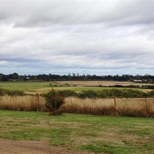 Farmland adjacent to Woolmers Estate