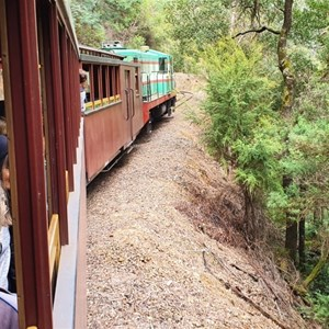 Train under way through Stringers Creek Gorge