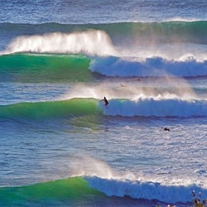 The  Surf