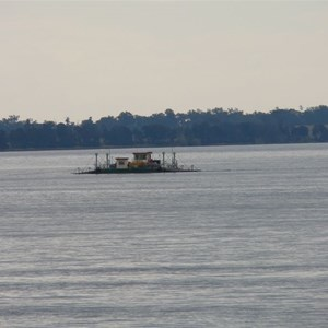 Small vehicle ferry on Clarence River