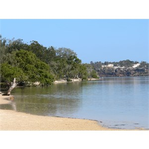 Estuary at Wooli