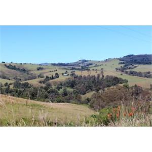 Farm land near North Dorrigo