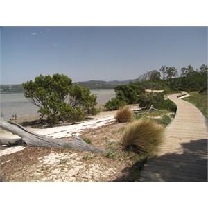 Merimbula boardwalk 1.75km