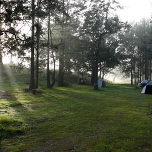 Belowra camping area
