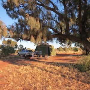 Campsite with shady desert oaks