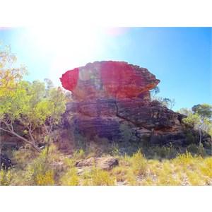 dilldoll rock 2