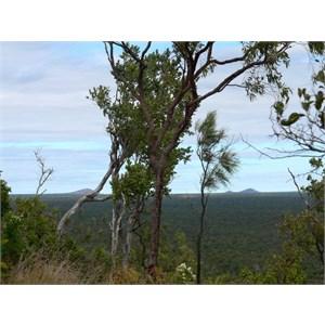 View from rim of Kilkani Cone