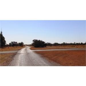 The Road to Birdsville
