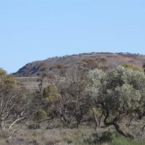 Eurilla Hill - Gawler Ranges SA