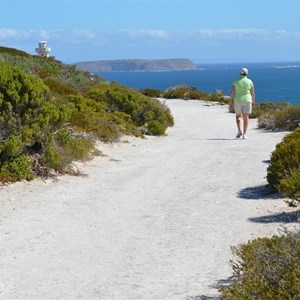 Path leading to Cape Spencer Lighthouse