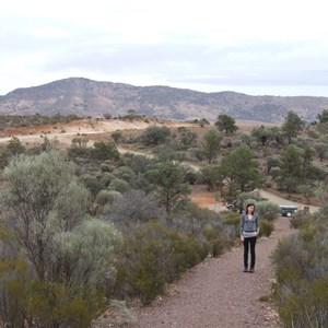 Buckaringa Gorge lookout trail