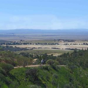 Yarra Vale Gorge