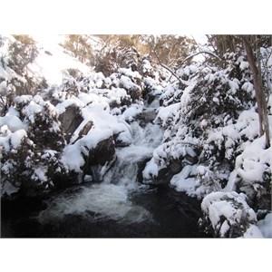 Thredbo River upstream of village