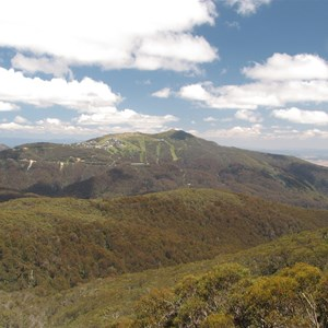 View back to Mt Buller Jan 2012