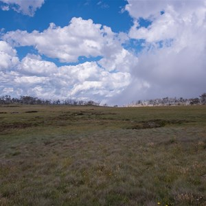Dargo High Plains