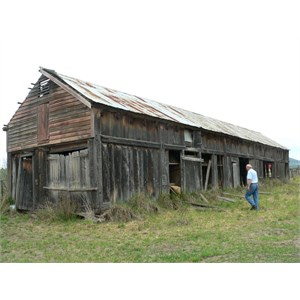 Old barn in Delegate