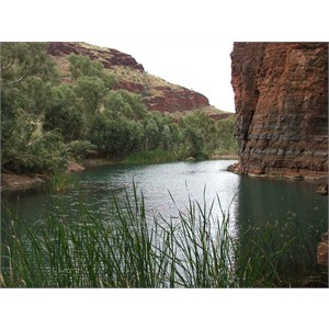 Wittenoom Town Pool May 2013