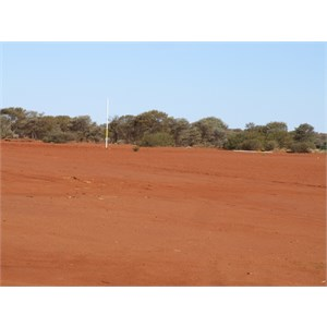 footy oval at the murch
