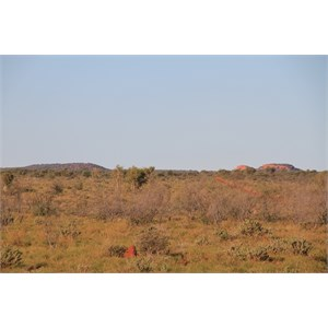 Young Range seen from 14km south (Everard Junction)