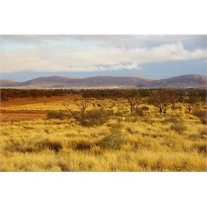 Rawlinson Range