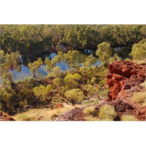 Fortescue River from Cliff Top Lookout