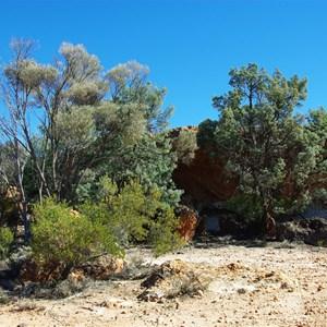 Pine Tree Caves