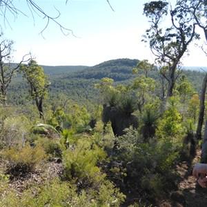 Mount Cuthbert from Mount Vincent - Bibbulmun Track
