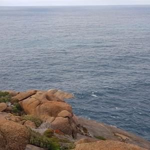 Torbay Head