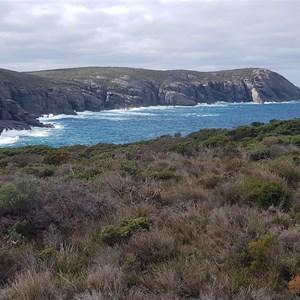 Torbay Head (in background)